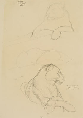 Vivian Smith; Untitled (Leopard and hunting leopard); 1913-1917?; 1988/27/447