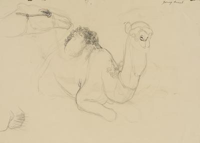 Vivian Smith; Untitled (Camel); 1913-1917?; 1988/27/442