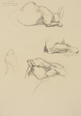 Vivian Smith; Untitled (Camel); 29 Dec 1913; 1988/27/441
