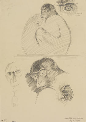 Untitled (Monkeys)
