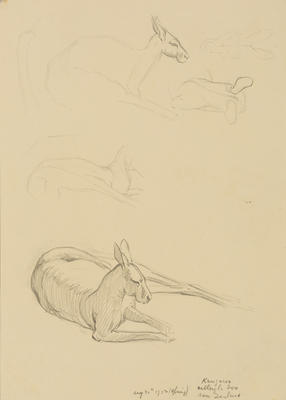 Vivian Smith; Untitled (Kangaroo); 20 Aug 1913; 1988/27/420