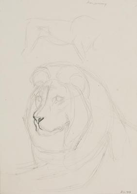 Vivian Smith; Untitled (Lion); Dec 1913; 1988/27/449