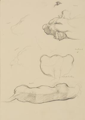 Vivian Smith; Untitled (Lioness and cub); Feb 1913-Jun 1914; 1988/27/456