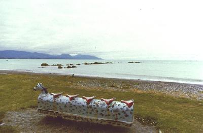 Untitled (Kaikoura)