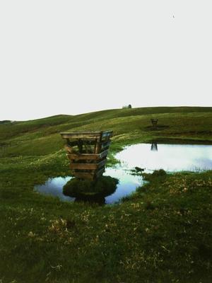 Bob Negryn; Untitled (Kaitaia, Northland); 1994/10/27