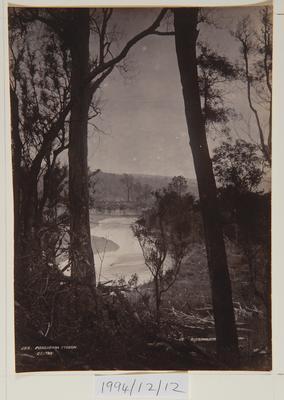 Frank Denton; Pohangina Stream; Circa 1889-1963; 1994/12/12