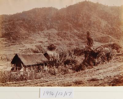 W H T Partington; Pipiriki Pa; 1902; 1994/12/17