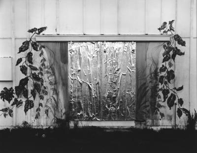 Decorated doorway near Motueka