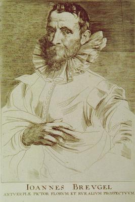 Joannes Breugel