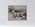 Untitled (cartoon - horses, man in field)
