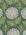 Untitled (Hydrangea wallpaper design)