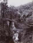 On Wanganui River (55)