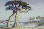 Evening, Monterey Cypress, California. 1926
