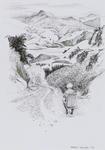 Untitled (Akaroa Harbour 3'99)