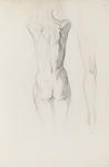 Untitled (Nude from Rear)