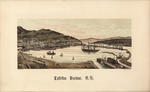 Lyttelton Harbour, N.Z. after: E. Wheeler & Son (photo)