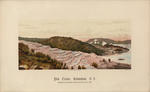 Pink Terrace, Rotomahana, N.Z. after: C.Spencer (photo)