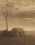 Desolation (Scene at Oamaru)