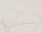 Untitled (Sleeping cat)