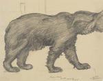 Untitled (Brown bear)