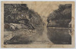 "Postcard titled ""On the Wanganui River NZ"" addressed to Edith Collier from Jessie D Hoey."