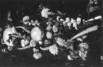 Everlasting Flowers, Wanganui River, 1981