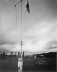 Kai Iwi (flag)